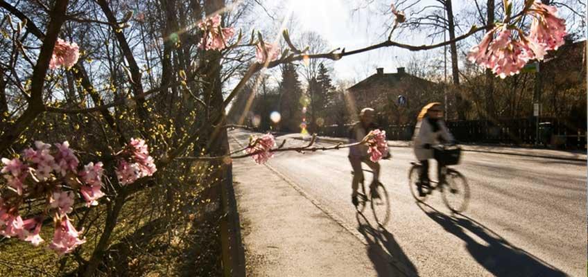Två personer cyklar