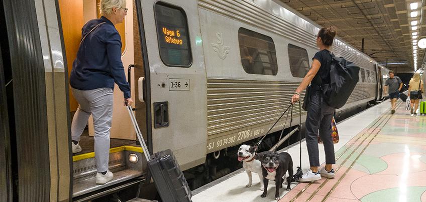Tågpassagerare Foto Jan-Erik Kaiser, Mostphotos